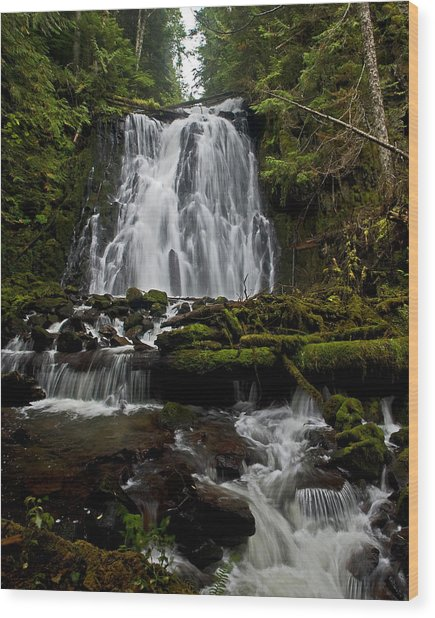 Yocum Falls Oregon Wood Print