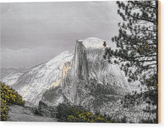 Yosemite Half Dome Wood Print