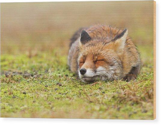 Zen Fox Series - Happy Fox Is Happy II Wood Print