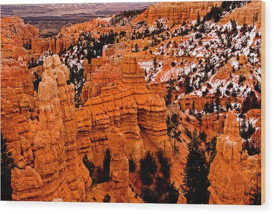 Bryce Canyon N.p. Wood Print by Larry Gohl