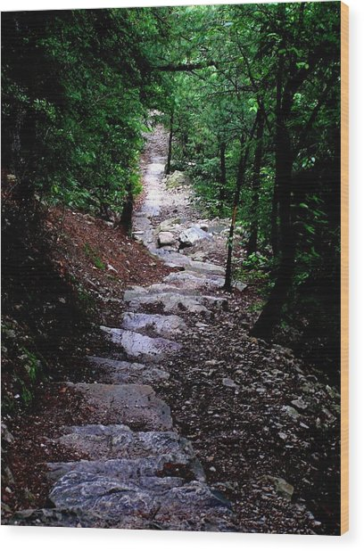 1000 Steps In Mifflin Co Pa Wood Print by Jeanette Oberholtzer