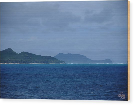 Hawaii Wood Print by Thea Wolff