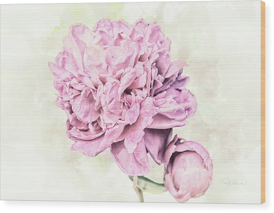 10861 Spring Peony Wood Print