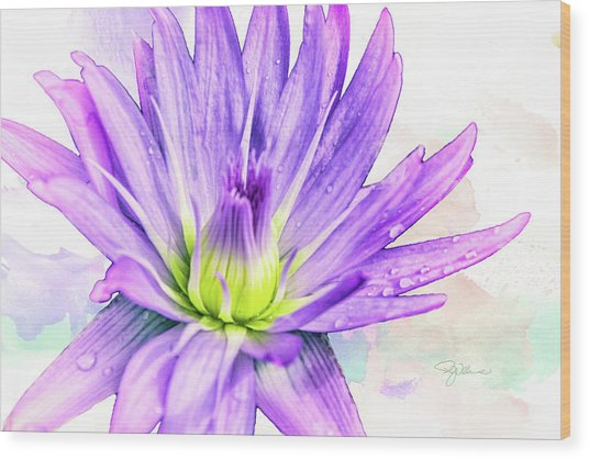10889 Purple Lily Wood Print