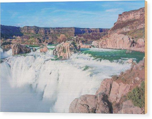 10917 Shoshone Falls Wood Print