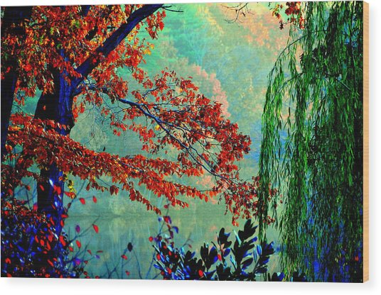 Autumn Colors Wood Print by Aron Chervin