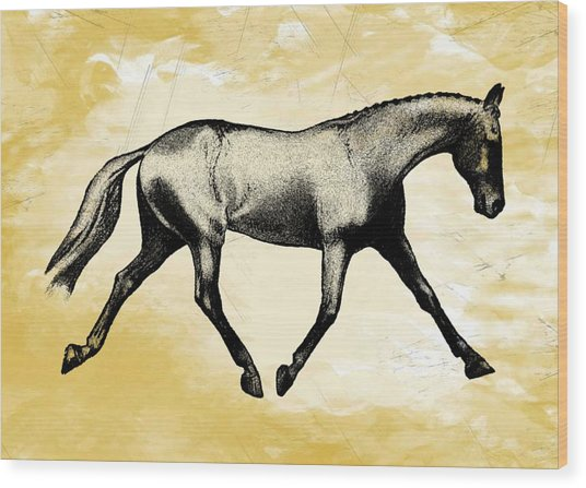 Lengthen Trot Stencil Wood Print by JAMART Photography