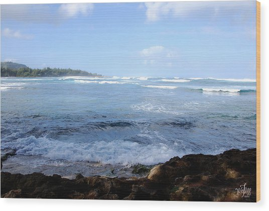 Hawaii Wood Print by Thea Wolff