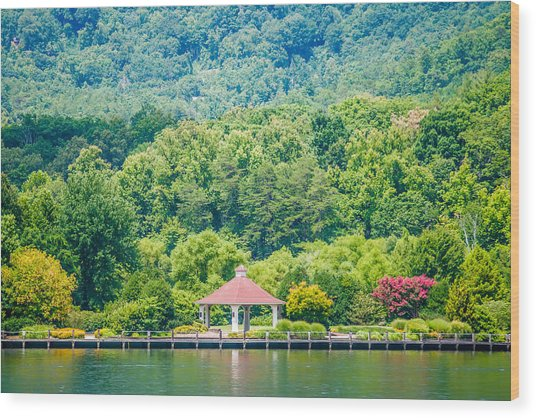 Scenery Around Lake Lure North Carolina Wood Print