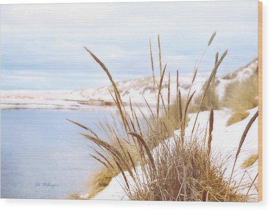 Wood Print featuring the digital art Michigan Winter by Jill Wellington
