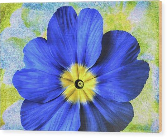 Blue Primrose Wood Print