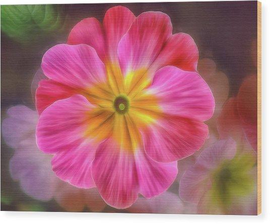 Pink Primrose #1 Wood Print