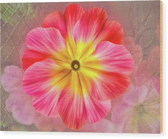 Pink Primrose #2 Wood Print