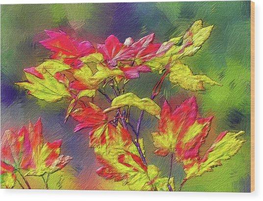 Vine Maple Color Wood Print