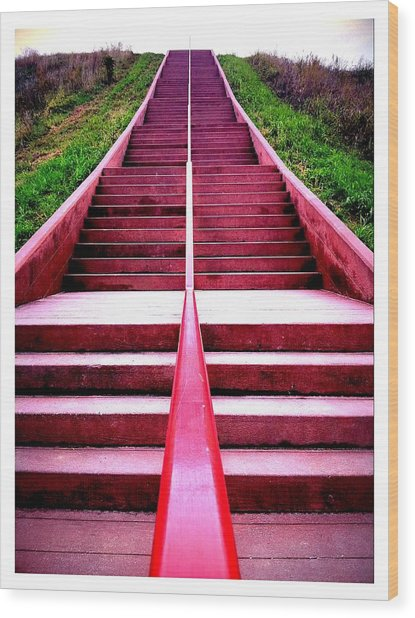 145 Steps To Monks Mound Wood Print by John McGarity
