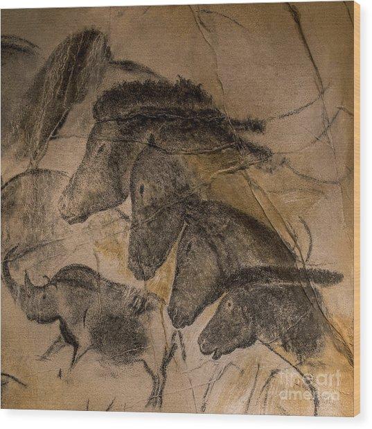 150501p087 Wood Print