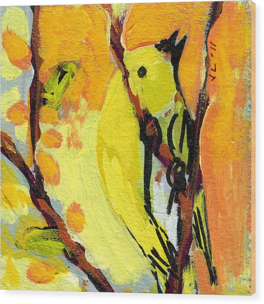 16 Birds No 1 Wood Print