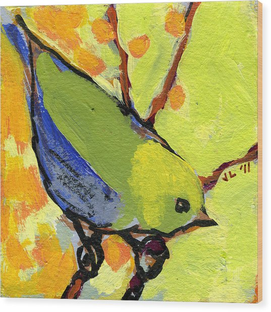 16 Birds No 2 Wood Print