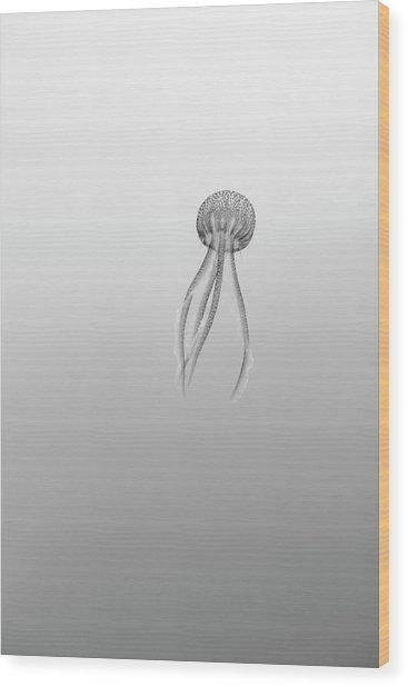 160702-0844 Wood Print