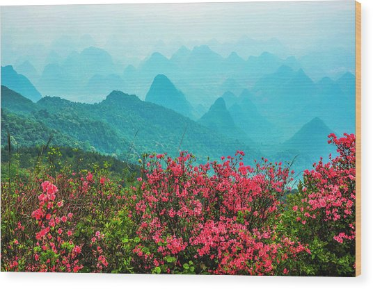 Blossoming Azalea And Mountain Scenery Wood Print