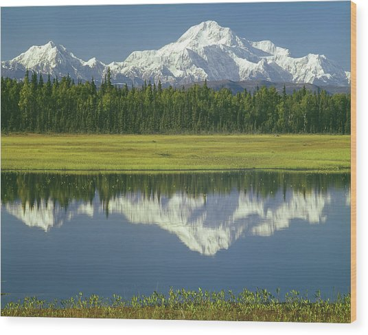 1m1325 Mt. Hunter And Mt. Denali Wood Print