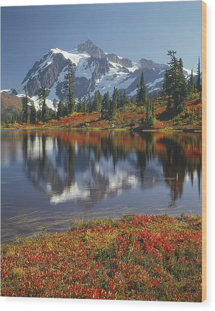 1m4208 Mt. Shuksan And Picture Lake Wood Print