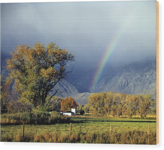 1m6345 Rainbow In Sierras Wood Print