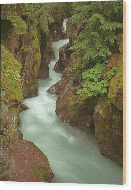 1m8115 Avalanche Gorge Mt Wood Print