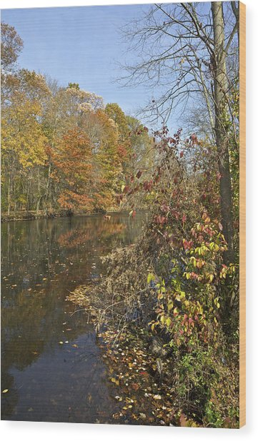 Autumn Colors On The Canal Wood Print