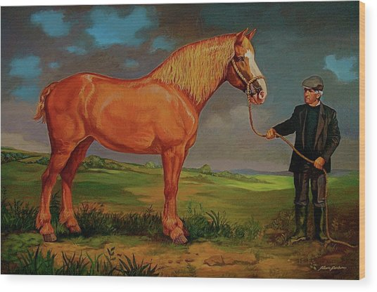 Belgian Draft Horse. Wood Print by Alan Carlson