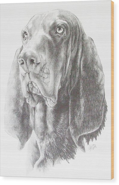 Black And Tan Coonhound Wood Print
