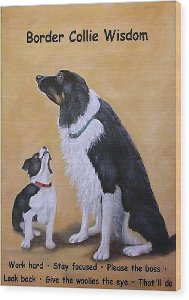 Border Collie Wisdom Wood Print