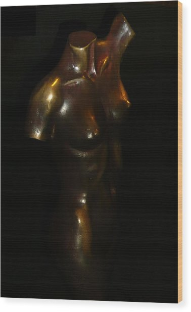 Bronze Beauty Wood Print
