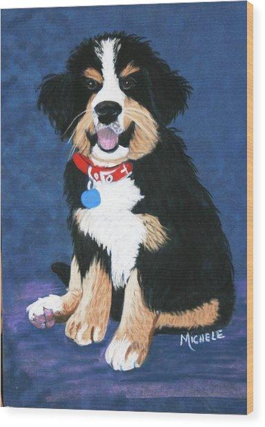 Burmese Mountain Pup Wood Print