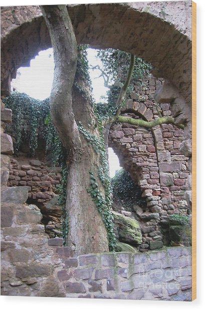 Castle Ruin Noerten-hardenberg Wood Print by Valentina Vassilieva