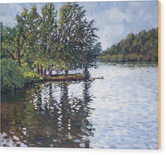 Cher-ful Lake Wood Print