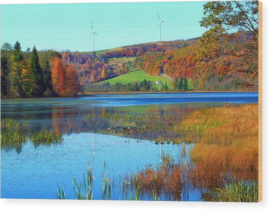Cranberry Glade Lake Wood Print by Tammy  McGogney