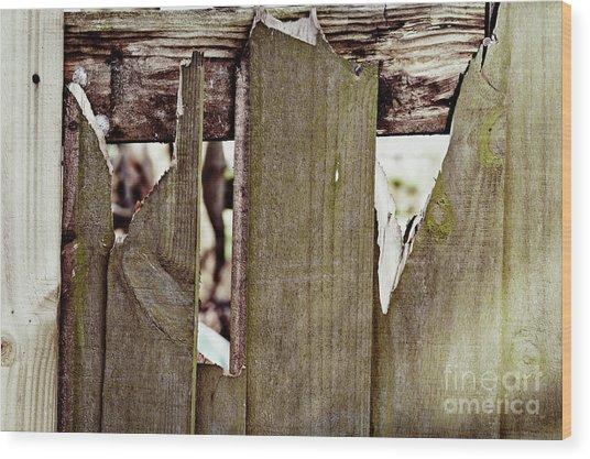 Damaged Fence Wood Print