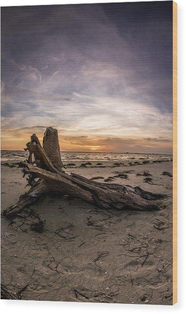 Driftwood Sunrise On Sanibel Island Wood Print