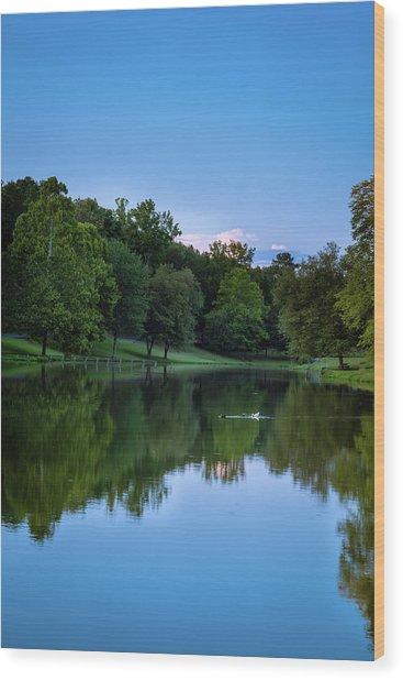 2 Ducks Wood Print