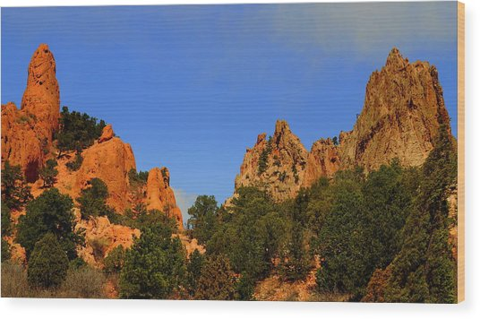 Garden Of The Gods Wood Print by Patrick  Short