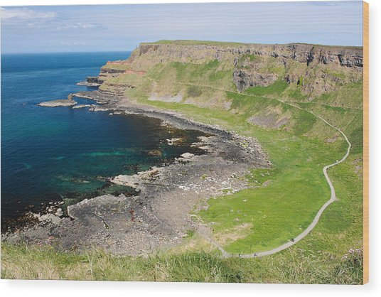 Giant Causeway Northern Ireland Wood Print by Pierre Leclerc Photography