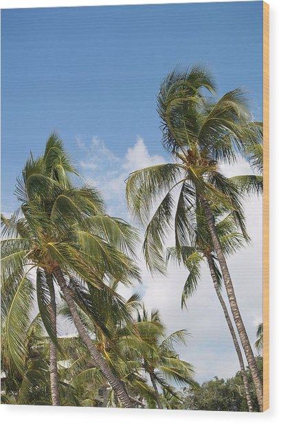 Hawaiian Breeze Wood Print