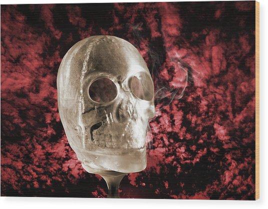 Ice Skull'pture Wood Print