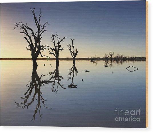 Lake Bonney Barmera Riverland South Australia Wood Print