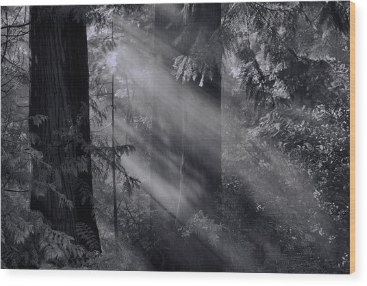 Let There Be Light Wood Print