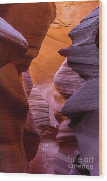 Lower Antelope Canyon Wood Print by Craig Shaknis