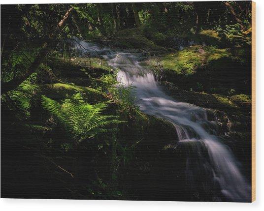 Lynn Mill Waterfalls Wood Print