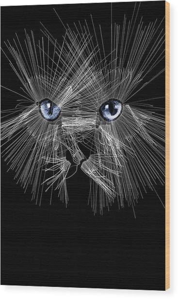 Mister Whiskers Wood Print