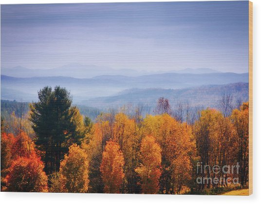 Morning Fog Wood Print by Scott Kemper